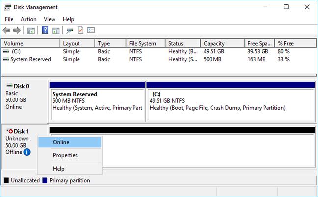 Windows bring disk online