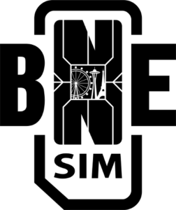 BNESIM logo